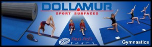 Dollamur-Homepage-gym1